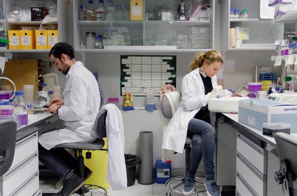Investigadores del grupo Inestabilidad Genética en los laboratorios del CABIMER