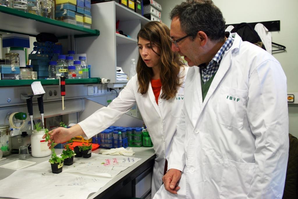 Los investigadores Belén Naranjo  y Francisco J. Cejudo