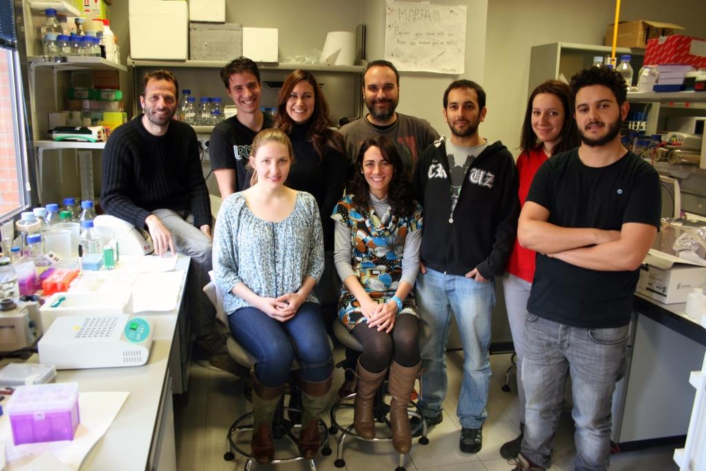 Grupo de investigación liderado por Felipe Cortés Ledesma