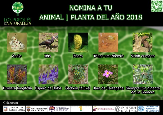 Cartel Animal Planta 2018