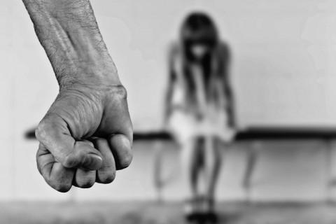 Investigadores de la US estudian la relación entre factores que pueden predecir los delitos violentos