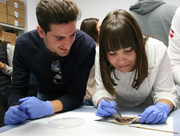 Taller Semana de la Ciencia en CITIUS Celestino Mutis