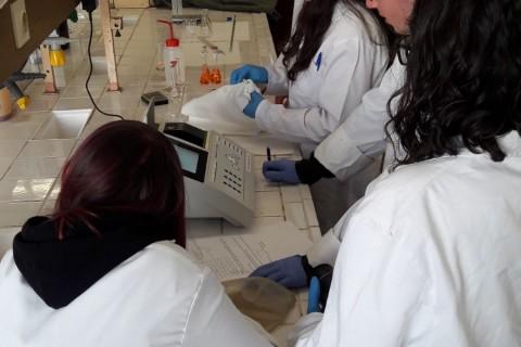 Casi un centenar de adolescentes se convierten en investigadores en PIIISA Sevilla