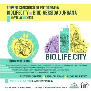 """Conoce y participa en """"BioLifeCity"""", un proyecto sobre biodiversidad urbana en Sevilla"""