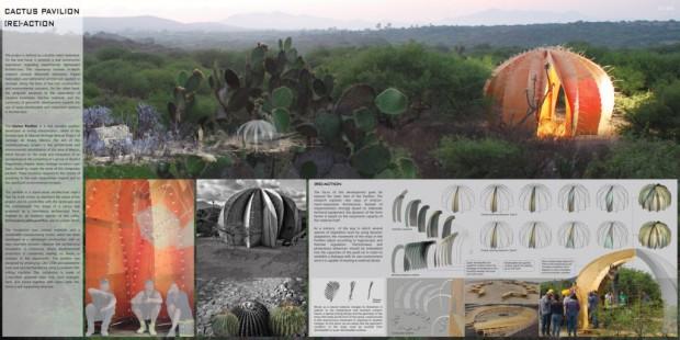 Cactus Pavilion